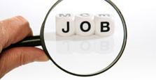 IT job search AVID
